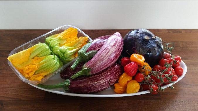 00 grøntsager fra Campo